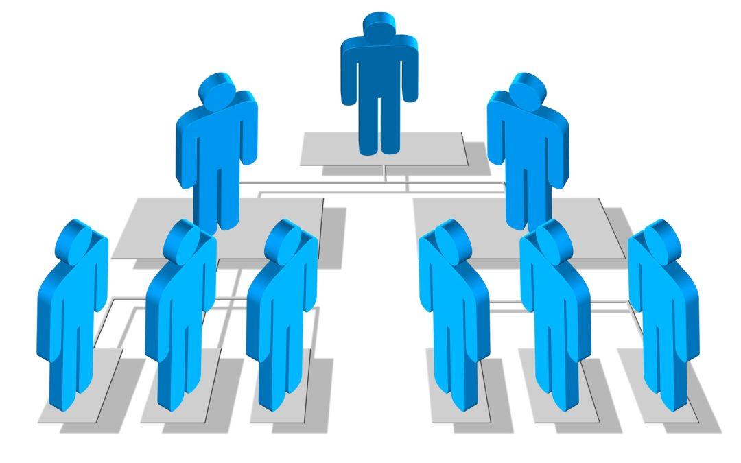 La Estructura Organizativa en las PYMES: ¿por qué y cómo definirla?