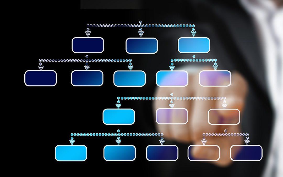 La importancia de la Organización Empresarial y las 3 Etapas para lograrla